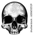 Skull In A Vintage Retro Hand...