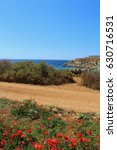 Small photo of Golden Bay, Malta