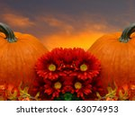 Two Pumpkins In A Beautiful...