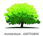Plane Tree Vector