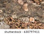brick background and vintage... | Shutterstock . vector #630797411