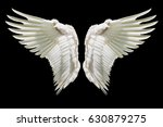 angel wings  internal white... | Shutterstock . vector #630879275
