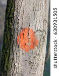 Small photo of The red Circle drawn with paint on a tree trunk - the Embodiment of the Symbol of the Rising Sun on the Japanese flag.