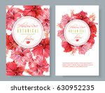 vector red tea vertical banners ... | Shutterstock .eps vector #630952235
