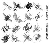 big set of insects  bugs ... | Shutterstock .eps vector #630953504