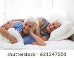senior couple relaxing in the... | Shutterstock . vector #631247201