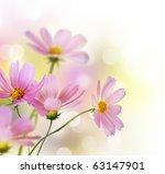Beautiful Flowers Border.flora...