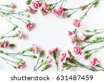 red carnations isolated on... | Shutterstock . vector #631487459
