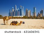 the camels on jumeirah beach... | Shutterstock . vector #631606541
