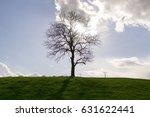 abandoned tree on meadow  blue... | Shutterstock . vector #631622441