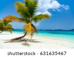 beautiful tropical beach with... | Shutterstock . vector #631635467