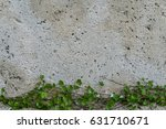 Stone Wall With Green Creeper...