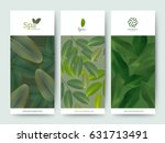 branding package flower nature... | Shutterstock .eps vector #631713491