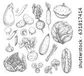 vegetable and mushroom sketches.... | Shutterstock .eps vector #631817414