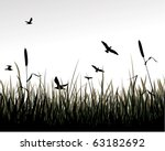 Swamp With Reed. Every Group O...