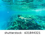 beautiful coral reef with young ... | Shutterstock . vector #631844321