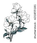 white wild roses flowers... | Shutterstock . vector #631855181