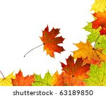 high resolution colorful autumn ... | Shutterstock . vector #63189850