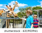 two little kids boys  sibling... | Shutterstock . vector #631903961