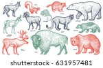 animals with names set. polar... | Shutterstock .eps vector #631957481