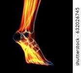 human leg muscles anatomy. 3d | Shutterstock . vector #632026745