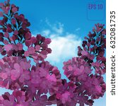 sweet lilac on the blue sky... | Shutterstock .eps vector #632081735