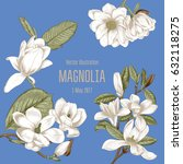 Magnolia. Flowers. Vector...
