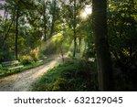 path of light  forest | Shutterstock . vector #632129045