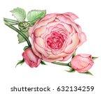 watercolor painting beautiful... | Shutterstock . vector #632134259