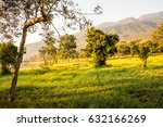 landscape view of huay tueng... | Shutterstock . vector #632166269