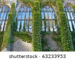 Ivy Covered College Building...
