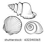 hand draw set sea shell  coral  ... | Shutterstock .eps vector #632340365