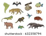 animals of south america vector ... | Shutterstock .eps vector #632358794