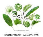 vector tropical exotic leaves ... | Shutterstock .eps vector #632393495