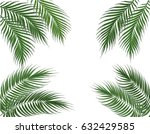 tropical green palm leaves on...   Shutterstock . vector #632429585