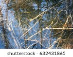 fallen trees in a shallow pond... | Shutterstock . vector #632431865