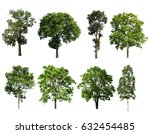 collection of tree isolated on... | Shutterstock . vector #632454485