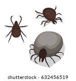 tick poses cartoon vector... | Shutterstock .eps vector #632456519
