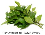 green tea leaf isolated on... | Shutterstock . vector #632469497