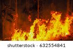 Fire Flames Forest.the Fire Is...