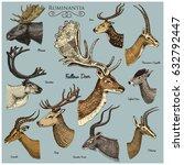Big Set Of Horn  Antlers...