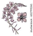 blooming sally. botanical... | Shutterstock .eps vector #632795261