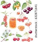 bright hand drawn jam set. jar... | Shutterstock . vector #632871641