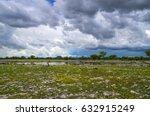 water point in rain season at... | Shutterstock . vector #632915249