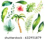 tropical isolated illustration... | Shutterstock . vector #632951879