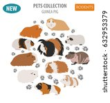 guinea pig breeds icon set flat ... | Shutterstock .eps vector #632953379