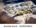 standing in front | Shutterstock . vector #633026861