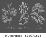 vector hand drawn collection of ... | Shutterstock .eps vector #633071615