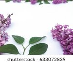 lilac stems over white | Shutterstock . vector #633072839