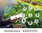 agricultural technology and... | Shutterstock . vector #633215291